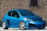547802_modified_peugeot_207_2